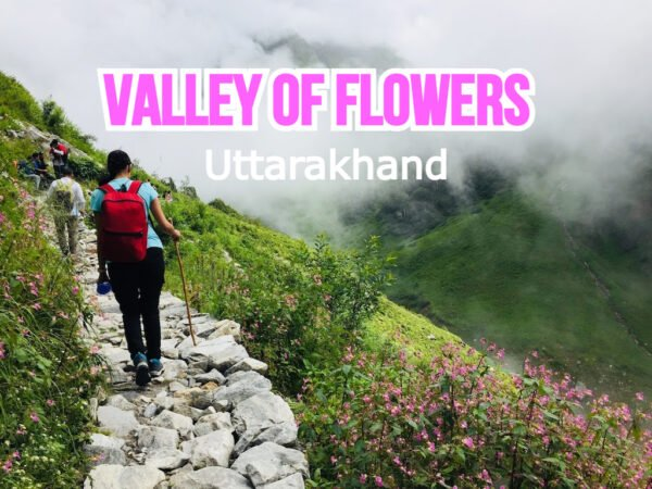 valley-of-flowers-mybdudgettour.jpg (1)