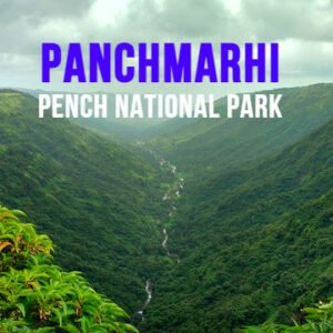 panchmarhi-with-pench-mybudgettour.jpg